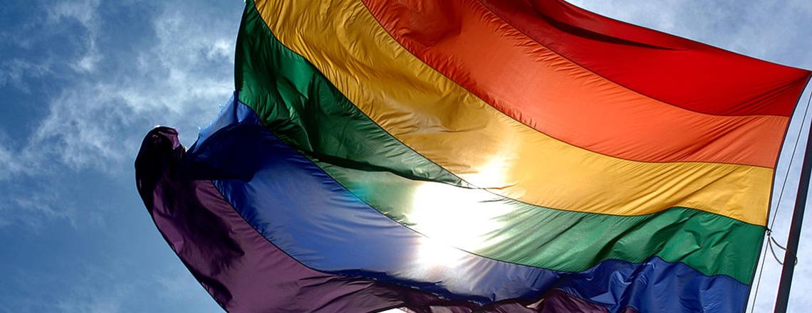 rainbow flag 1140